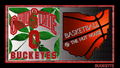 OHIO STATE BUCKEYES BASKETBALL @ THE NUT HOUSE - ohio-state-university-basketball wallpaper