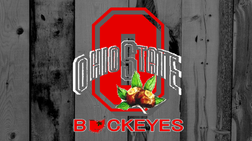 OHIO STATE BUCKEYES RED BLOCK O ON GRAY खलिहान