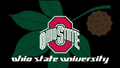 OHIO STATE universidad RED BLOCK O & BUCKEYE LEAF