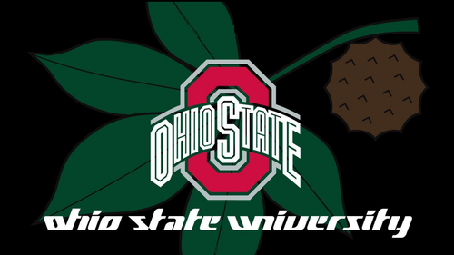 OHIO STATE universitas RED BLOCK O & BUCKEYE LEAF