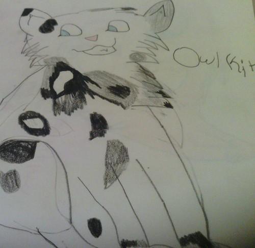 Owlkit ~~ Warrior 猫