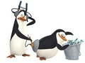 Random Penguins photo 2
