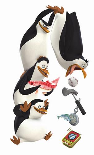 Zufällig Penguins Foto