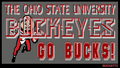 THE OHIO STATE universidad GO BUCKS!