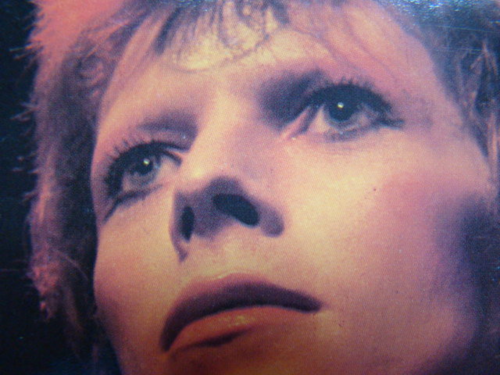 Ziggy Stardust wallpaper possibly with a portrait called Ziggy