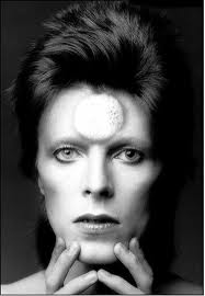 Ziggy Stardust wallpaper with a portrait entitled Ziggy