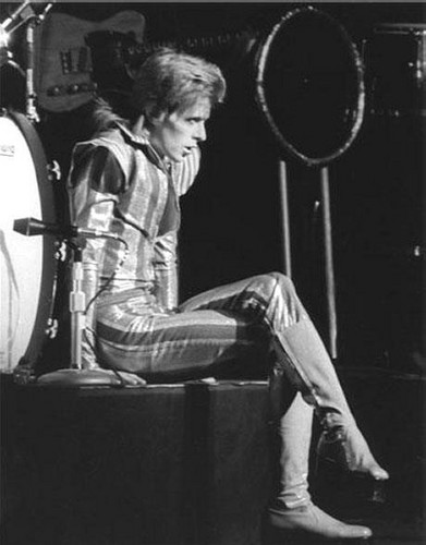 Ziggy Stardust wallpaper with a drummer titled Ziggy