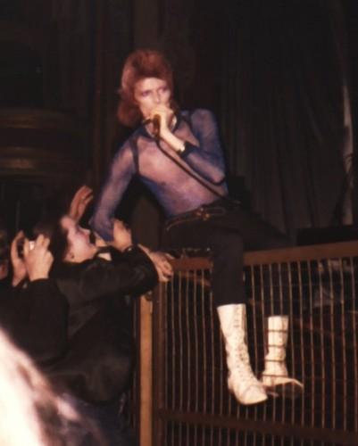 Ziggy Stardust wallpaper titled Ziggy