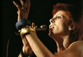 Ziggy - ziggy-stardust photo
