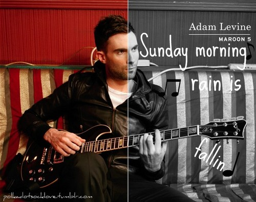 Adam Levine wallpaper containing a guitarist and a concert entitled Adam