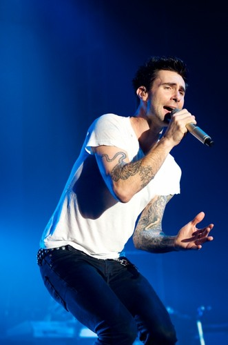 Adam Levine fondo de pantalla entitled Adam
