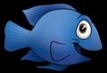 Blue samaki