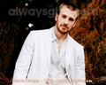 Chris Evans - chris-evans wallpaper