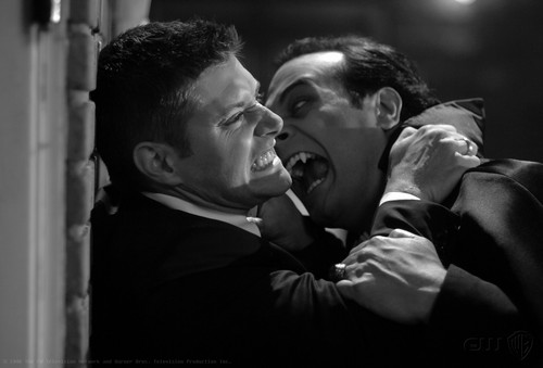 Dean And Dracula (Monster Movie)