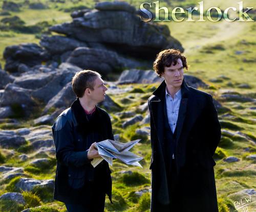 Dear Sherlock