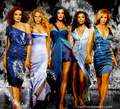 Desperate Housewives - desperate-housewives fan art