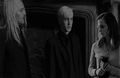 Draco/Hermione - draco-malfoy-and-hermione-granger photo