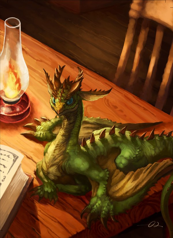 storys about dragons essays