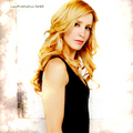 Felicity Huffman - desperate-housewives fan art