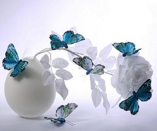 hoa and bướm