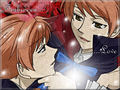 Forbidden Brotherly Love - yaoi wallpaper