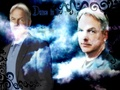 Gibbs - mark-harmon wallpaper