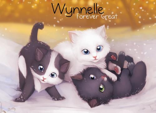 Gift For Wynn