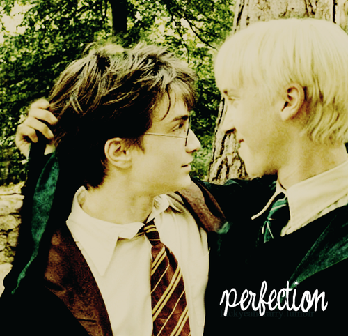 Harry Potter Yaoi!!