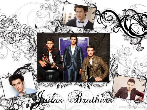Jonas brothers♥♥ - the-jonas-brothers Wallpaper