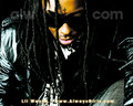 Lil' Wayne - lil-wayne wallpaper