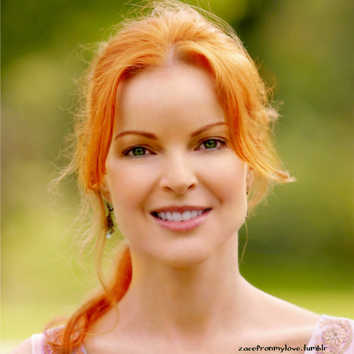 Desperate Housewives wallpaper with a portrait titled Marcia Cross