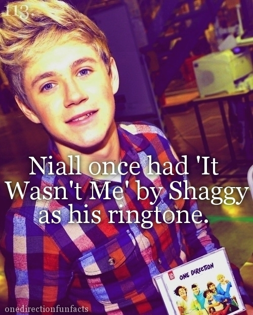 Niall Facts