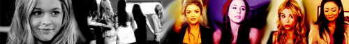 PLL banners