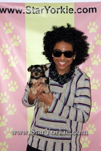Princeton&Hendrix (: