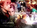 Romione wallpaper - romione wallpaper