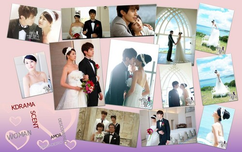 Scent of a Woman Wallpaper - korean-dramas Wallpaper