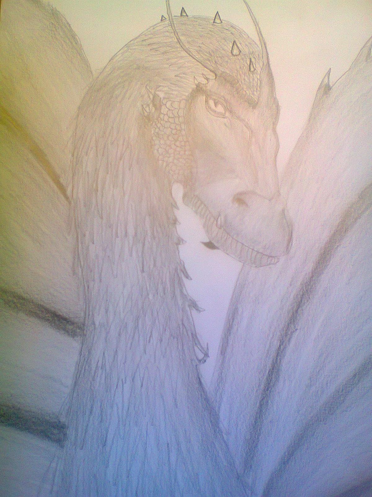 Shurikan - Eragon Fan Art (28536784) - Fanpop