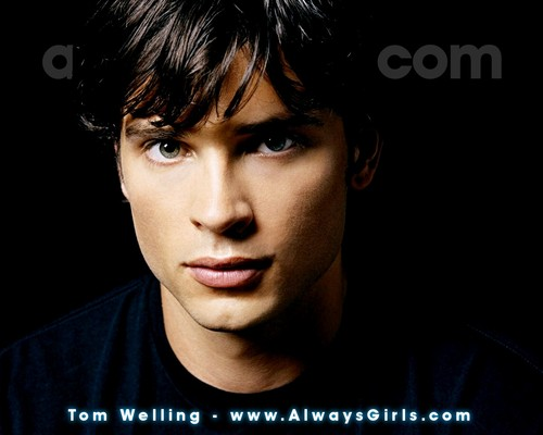 Tom Welling Hintergrund containing a portrait entitled Tom Welling