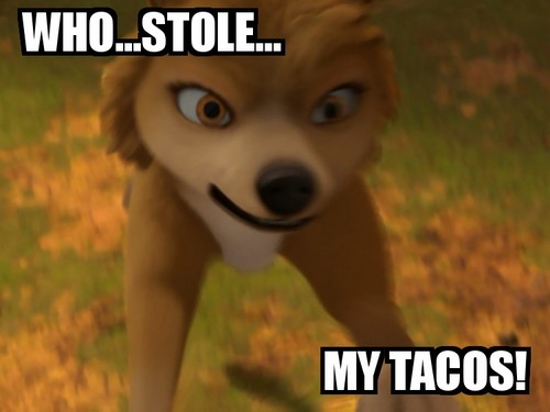 Who 偷了 her Tacos