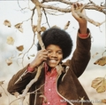 early years - michael-jackson photo