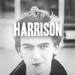 george - george-harrison icon