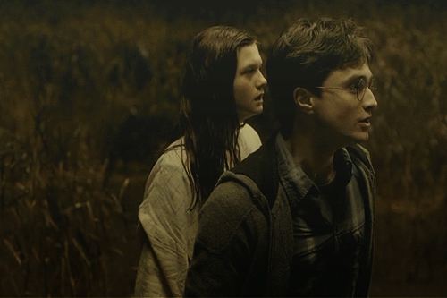 harry and Ginny HP6