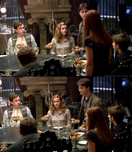 harry and Ginny lumaculb