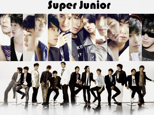 Super Junior wallpaper containing a concerto called super junior