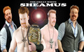 the great white sheamus