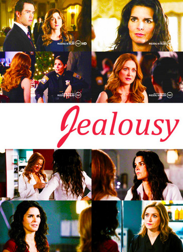 Rizzoli & Isles wallpaper possibly with a portrait called -Jane & Maura Alphabet-