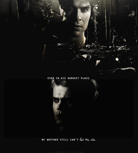 !!Salvatore Brothers!!