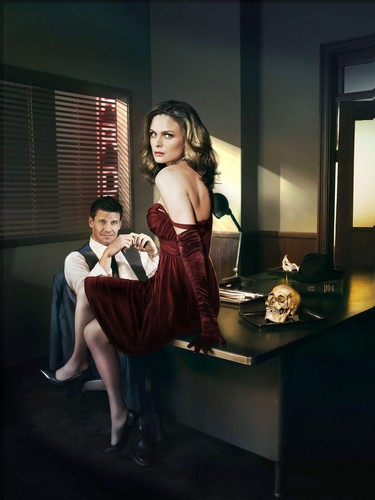 Temperance Brennan wallpaper with a living room, a drawing room, and a morning room entitled Booth and Bones
