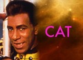 Cat - red-dwarf photo