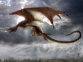 Dragon - mythical-creatures wallpaper
